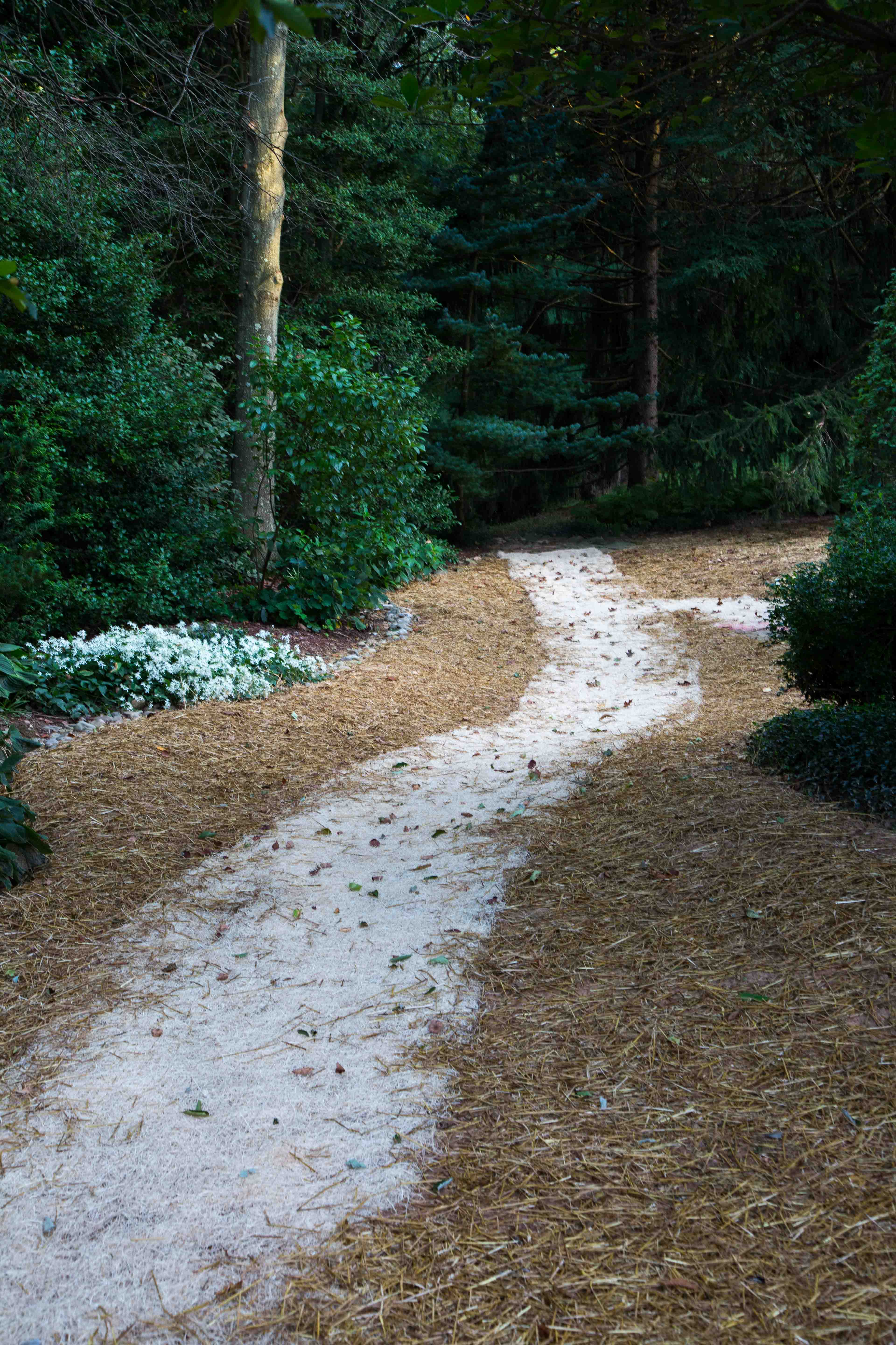 Drainage Swale Creative Exteriors Landscaping